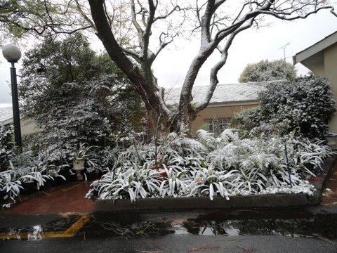 09_snow-0