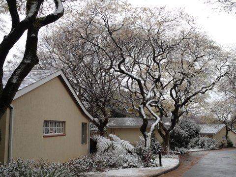 13_snow