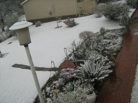 15_snow-0