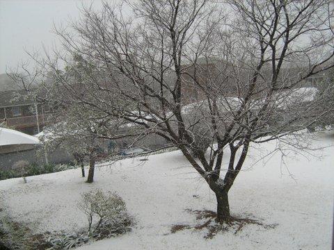 16_snow-0